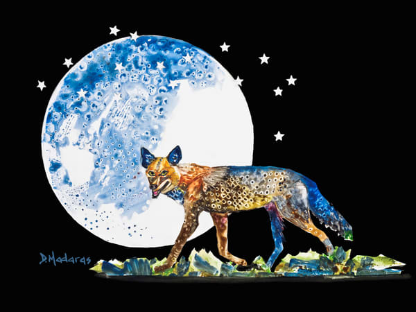 Coyote Moon Spirit Animal | Prints & Canvases