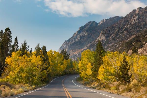 Autumn On The Road 2 Photography Art | Leiken Photography
