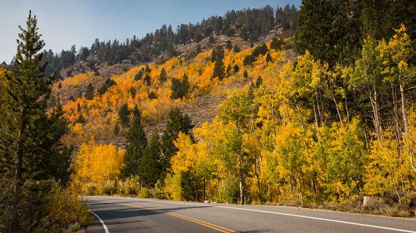Autumn On The Road 1 Photography Art | Leiken Photography