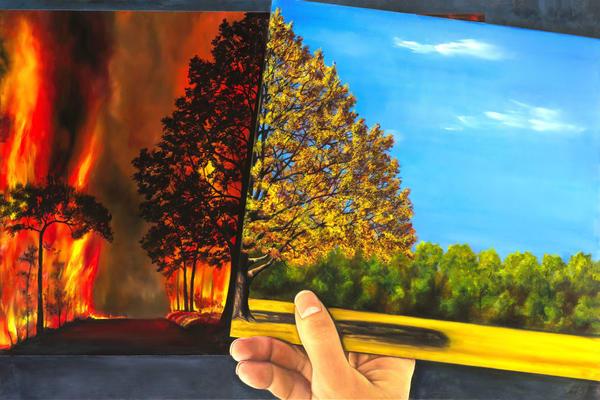 The Butterfly Effect Art   MMG Art Studio   Fine Art Colorado Gallery