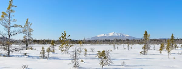 Katahdin from Black Spruce Bog
