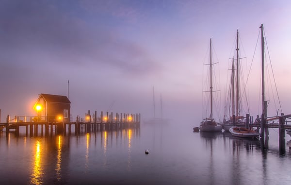Black Dog Dock Foggy Harbor Art | Michael Blanchard Inspirational Photography - Crossroads Gallery