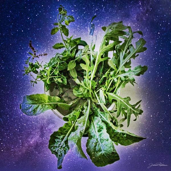 universe, leafyvegetables, earth, expand, energy, green, purple, jackierobbinsstudio, photographicprints, buyartonline