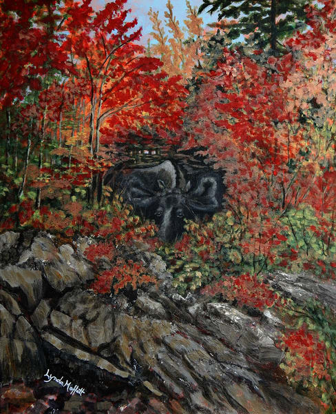 Moose On The Rocks! | Lynda Moffatt Fine Arts