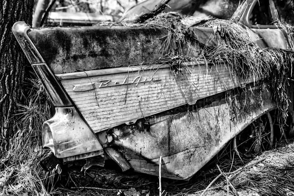 Belair Photography Art | Scott Krycia Photography