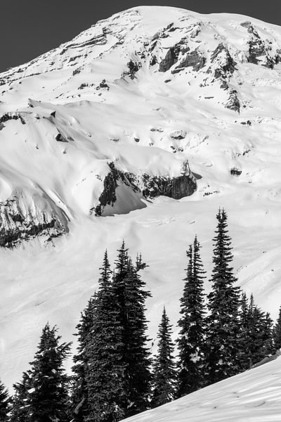 Alpine Winter, Mount Rainier, Washington, 2016