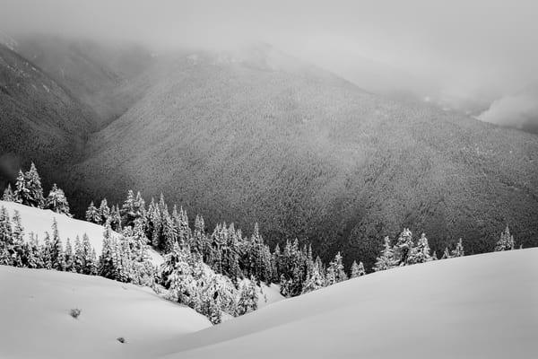 Cloudy Winter Day, Hurricane Ridge, Olympic National Park, Washington, 2016