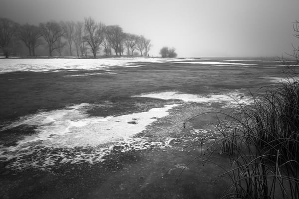 Frozen, Park Lake, Sun Lakes State Park, Washington, 2013