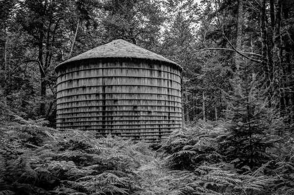 Wooden Water Tank in the Forest, 2014