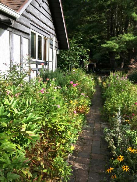 Zuzana's Garden Flower Walkway