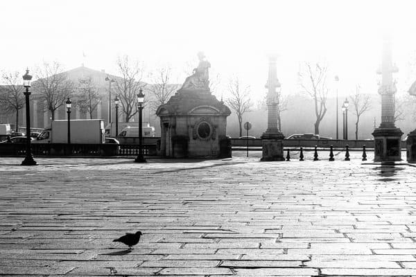 Place De La Concorde Photography Art | LenaDi Photography LLC