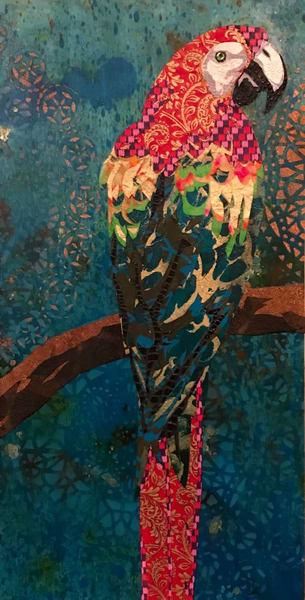 Scarlet Macaw  Art   Kristi Abbott Gallery & Studio