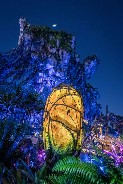 Pandora and Saturn - Pandora Disney World | William Drew Photography