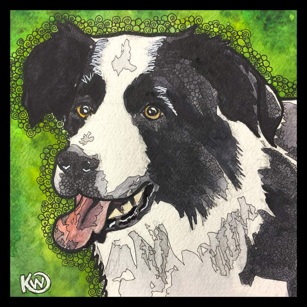 Border Collie Art | Water+Ink Studios