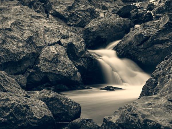 Nature Bw 1569 Photography Art | Dan Chung Fine Art