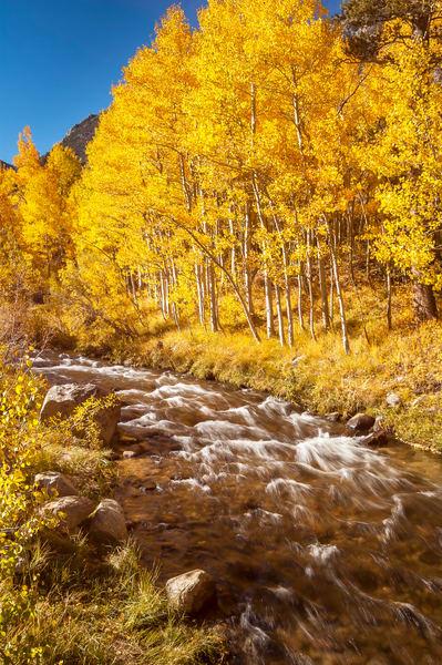 """Autumn Along a Mountain Stream"" print | Jim Parkin Fine Art Photography"