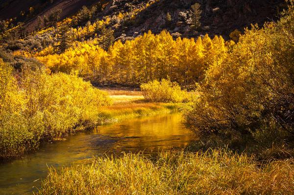"""Amazing Fall Colors"" print | Jim Parkin Fine Art Photography"