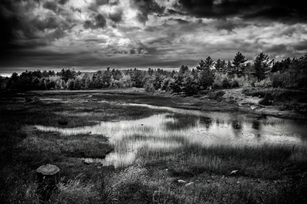 New Mills Meadow Pond | Shop Photography by Rick Berk
