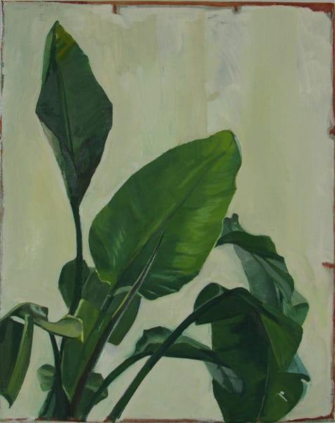 Study Of Leaves Art | Jono Wright Art