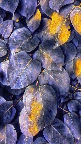"""Purple Meets Yellow"" Photography Art | Inspired Imagez"