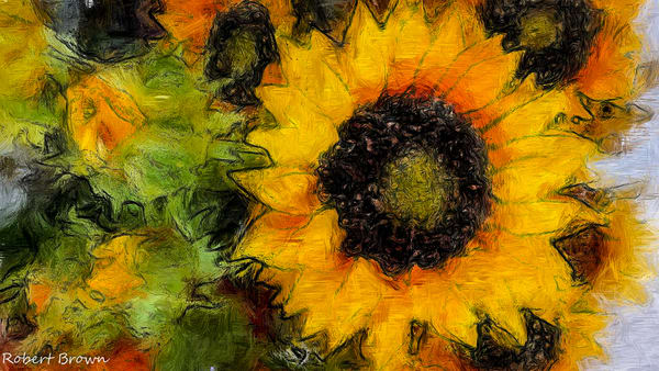 """Solo Sunflower"" Photography Art | Inspired Imagez"