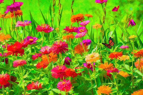"""""""Painterly Meadow"""" Photography Art 