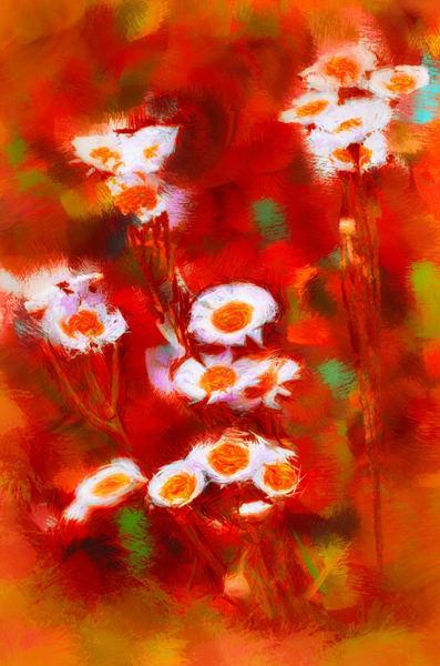 """Strawberry Fields Forever"" Photography Art | Inspired Imagez"