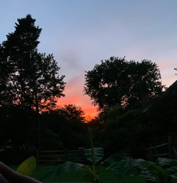 Neighbor Sunsets Art | Nisha Strain