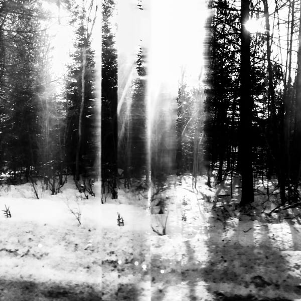 Dirt (Between Vancouver And Whistler) Photography Art   yako.foto