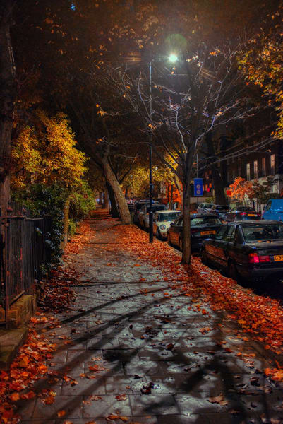 Colourful Camberwell Photography Art | Martin Geddes Photography
