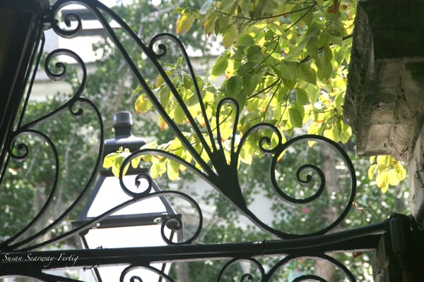 Iron And Nature Art | Susan Searway Art & Design