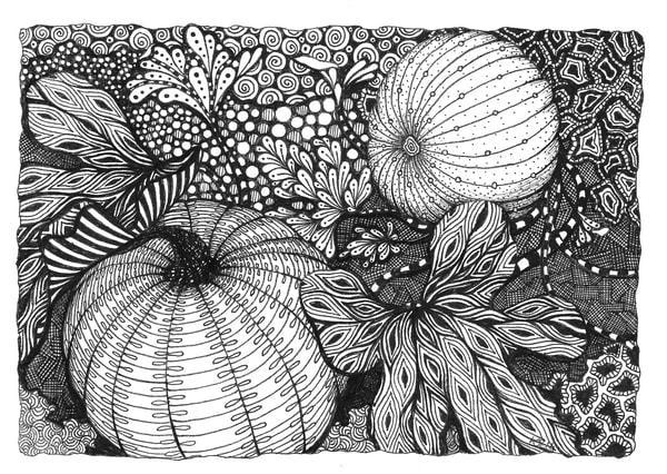 pumpkin field fine art print