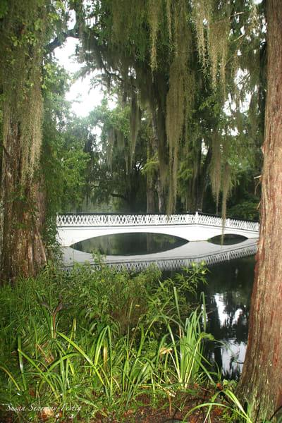 Magnolia Bridge 3 Art | Susan Searway Art & Design