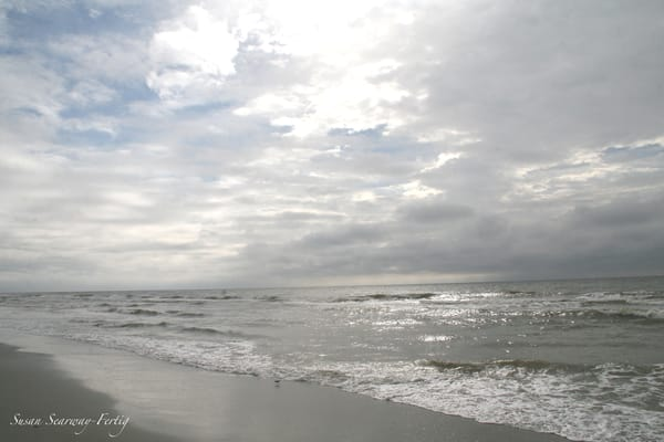 Myrtle Beach 4 Art | Susan Searway Art & Design