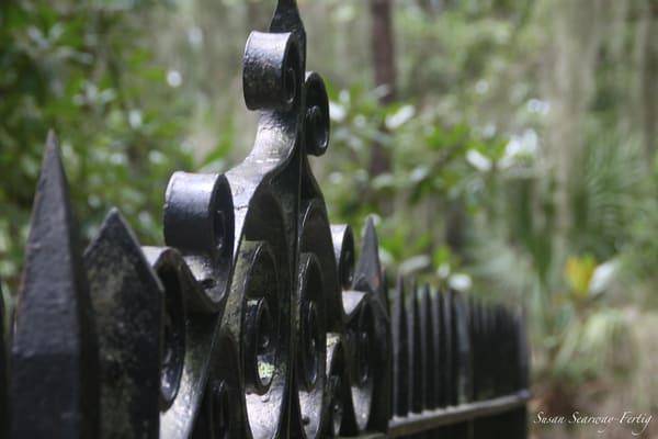Iron Gate Art | Susan Searway Art & Design
