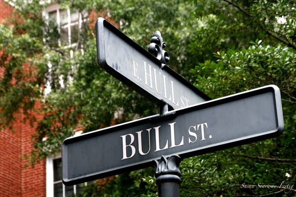 Bull St. & E. Hall St. Art | Susan Searway Art & Design