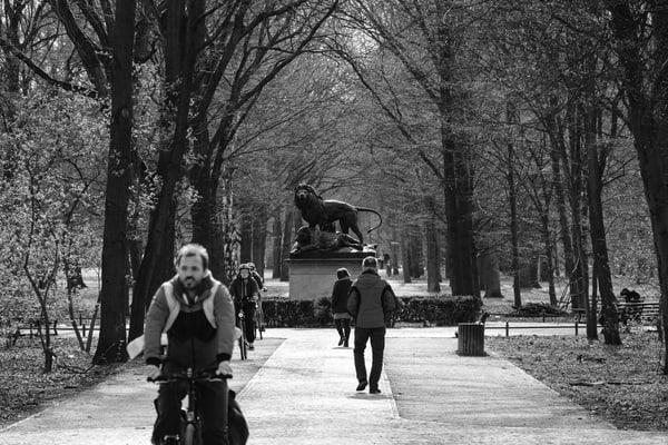 Berlin Garden Of Beasts (Der Tiergarten) Photography Art   Lodge Photo