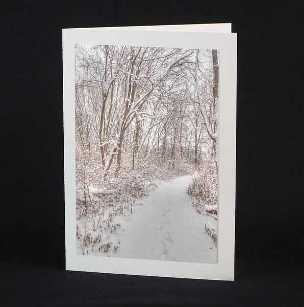 Winter Hike Greeting Card 4-pack