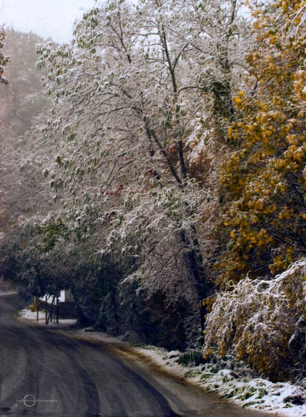 First Snow Road