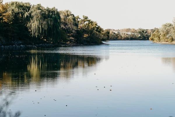Silence Photography Art | LenaDi Photography LLC