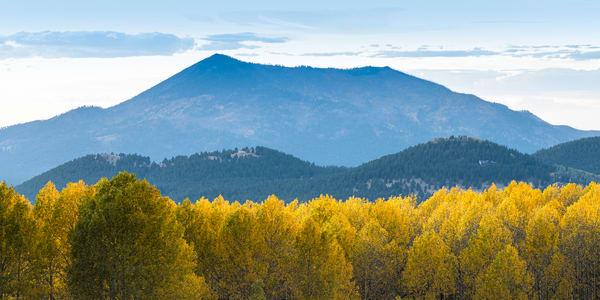 Blue Mountain Over Arizona Aspens Photography Art | Spry Gallery