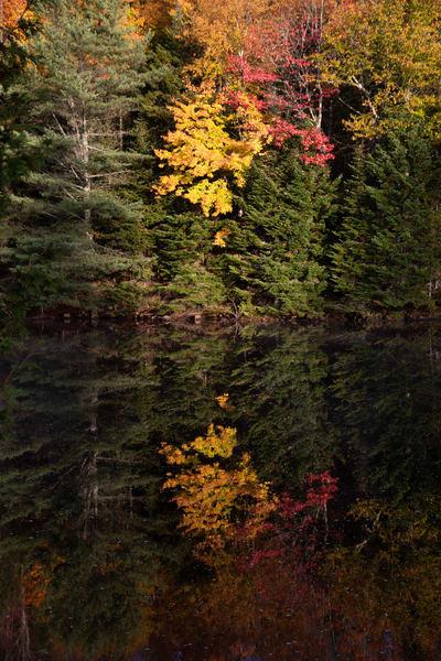 Reflection Photography Art | Scott Krycia Photography