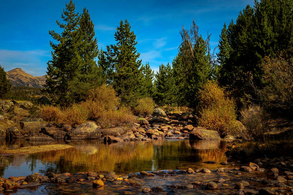 Autumn Creek Photography Art | McKendrick Photography