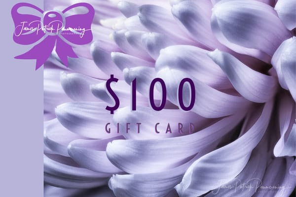 $100 Gift Card | James Patrick Pommerening Photography