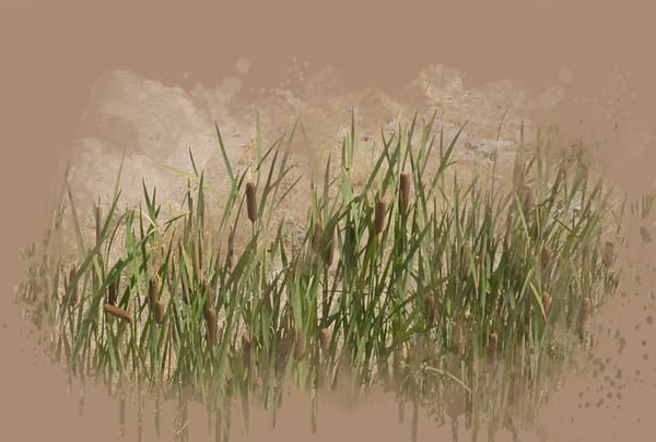 Cattails Art | Art from the Soul