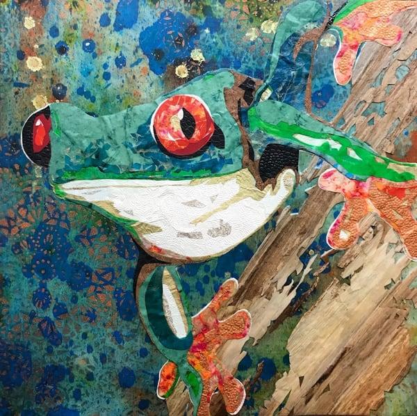 Red Eyed Tree Frog Art   Kristi Abbott Gallery & Studio