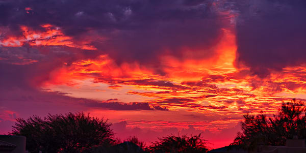 Haloween Sunset Photography Art   frednewmanphotography
