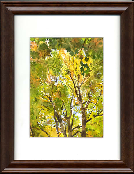 Below The Maple Art   Machalarts Watercolor Studio