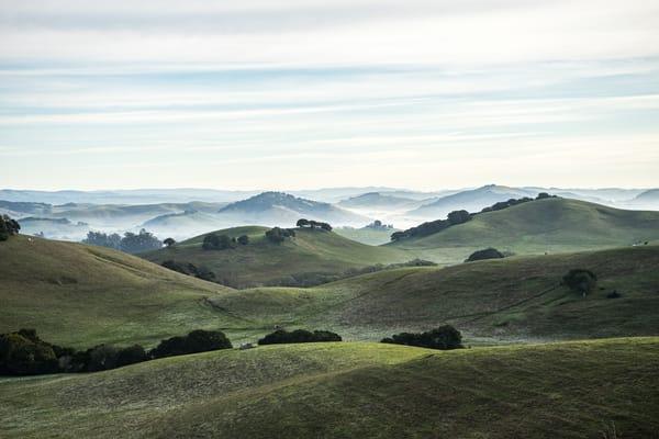 Wilson Hill -  Petaluma country morning sunrise photograph print