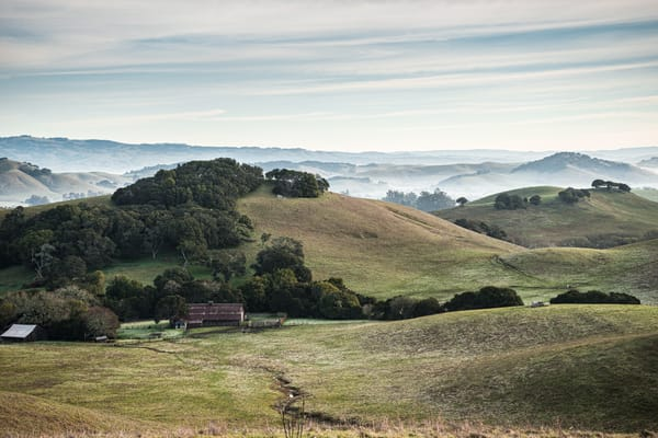 Red Barn in the Morning - Petaluma California country landscape photograph print